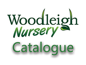 Woodleigh Nursery Catalogue