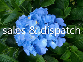 Woodleigh Nursery Sales and dispatch